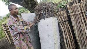 FAO: Etkili odun kömürü üretimi ve kullanımı sera gazı emisyonlarını düşürebilir