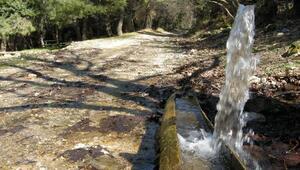 Suları kirleten bedelini ödemeli