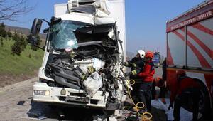 TEMde TIRa çarpan kamyonun sürücüsü öldü