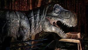 Jurassic World sergisi, dinozorları müzeye getiriyor