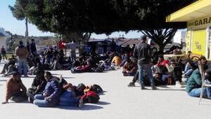 Antalyada 168 kaçak yakalandı