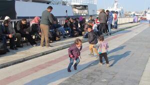 67 Suriyeli boğulmak üzereyken kurtarıldı