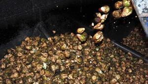 ABli çiftçiler üretim birlikte şeker pancarı üretimini artırıyor