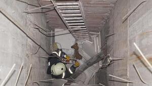 Asansör boşluğuna düşen köpek, itfaiye ekiplerince kurtarıldı