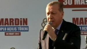 Erdoğan: Mardin'e yılda 10 milyon turist gelmiyorsa bunun nedeni terördür