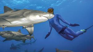Köpekbalıkları ve insanlar aynı obezite genine sahip 92