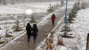 Merkez Haberleri: Ardahanda sis ve buzlanma kazalara yol açtı 43