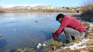 Merkez Haberleri: Ardahanda sis ve buzlanma kazalara yol açtı 31