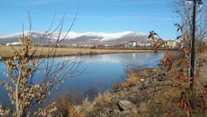 Merkez Haberleri: Ardahanda sis ve buzlanma kazalara yol açtı 71