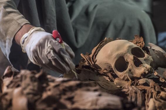 Son dakika Mısırda 3500 yıllık kuyumcu mezarı keşfedildi