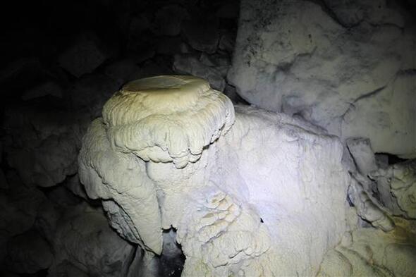 Kivi Mağarası ile ilgili görsel sonucu