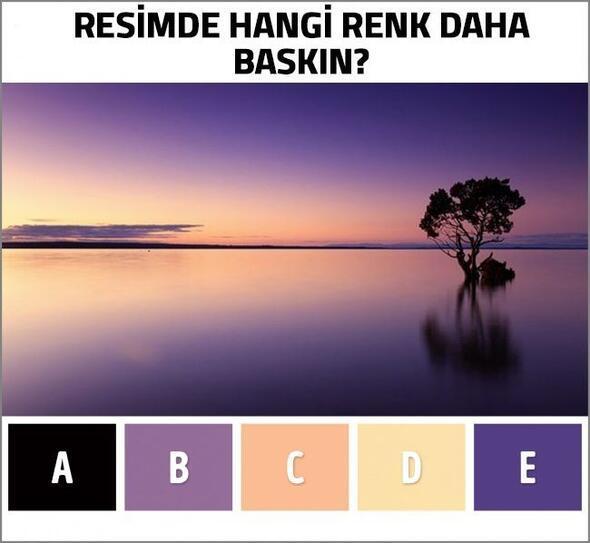 Sizce Hangi Renk Daha Baskın Bu Test Gerçek Yaşınızı Ortaya