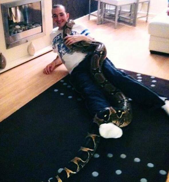 İskoç adam, boa yılanıyla tecavüzden 14 yıl hapis yedi