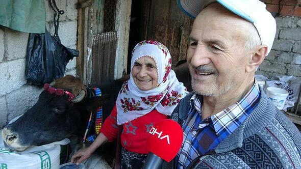 Ineğin Yaşını Duyan şaşırıyor Son Dakika Haberler