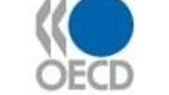 Turkish economy to slowdown seriously in 2009-OECD