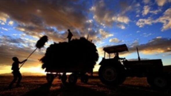 Türkiye tarım ürünlerinin dünyada yıldızı parlıyor