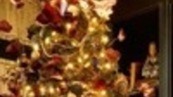 The History Behind The Christmas Tree