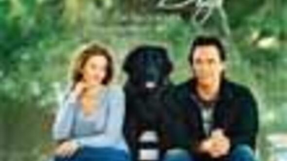 Single mit hund sucht mann? Gay lausanne agenda