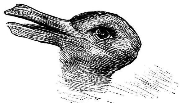 Tavşan mı yoksa ördek mi