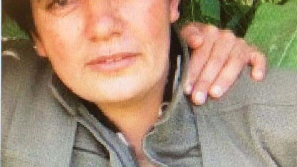 Başına 1.5 milyon ödül konulan PKKlı terörist etkisiz hale getirildi