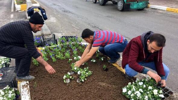 Hanide Bahara hazırlık çalışmaları başladı