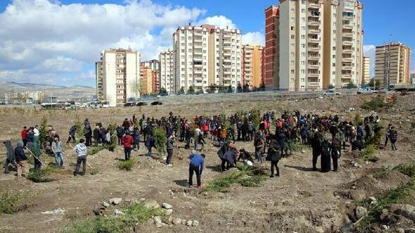 Tınaztepe Mahallesi, yeşile bürünüyor