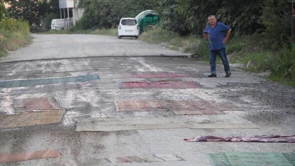 Yoldaki toza halılı çözüm