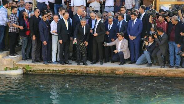 Abdullah Güle Şanlıurfada yoğun ilgi/ Ek fotoğraflar
