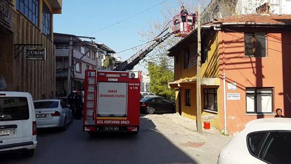 Fransadan yapılan ihbar üzerine Bursada kedi kurtarma operasyonu
