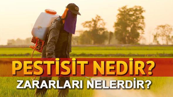 pestisit nedir ile ilgili görsel sonucu