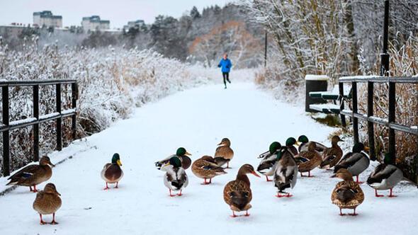 İsveç en soğuk gününü yaşadı