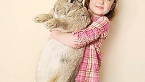 O en büyük tavşan