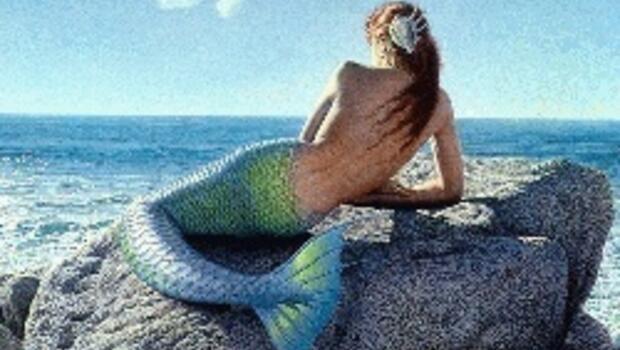 Deniz kızları için resmi açıklama