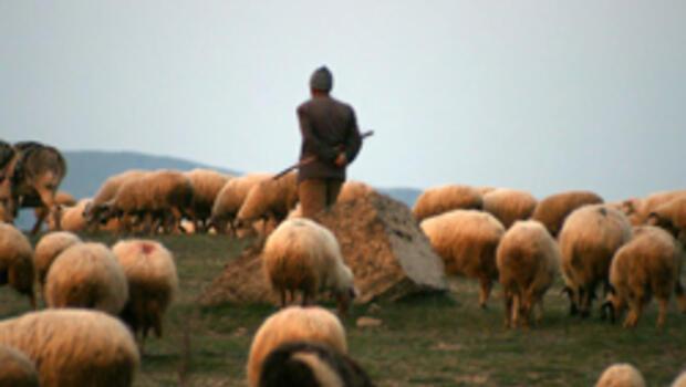 Rusya: İlk ateşi çoban açtı
