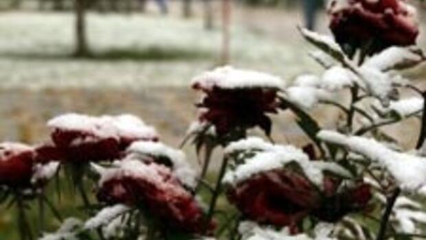 4 mevsim Türkiye