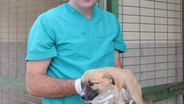 FETÖ sanığı veterinere 5 yıl hapis cezası