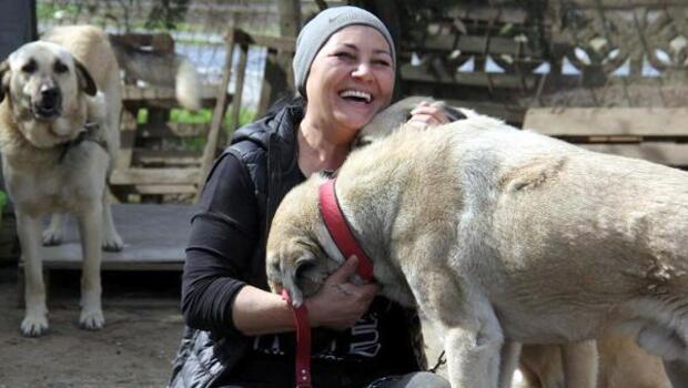 Öğretmenliği bıraktı, veterinerlik eğitimi aldı, kurduğu barınakta 400 köpeğe bakıyor