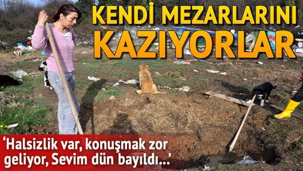 Açlık grevi yapan hayvanseverler kedi mezarlarını kazdı