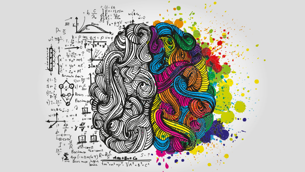 Beyin, evet bildiğiniz beyin