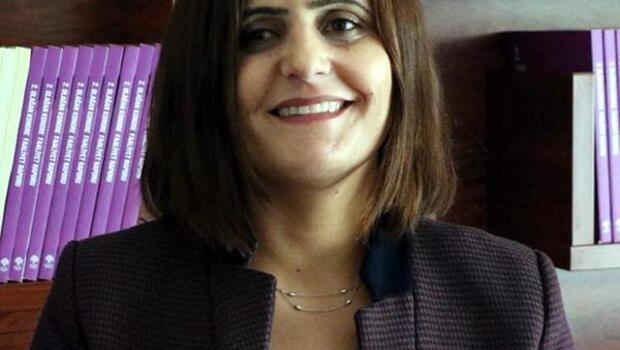 HDPli Taşdemir, Ağrıda gözaltına alındı (2)