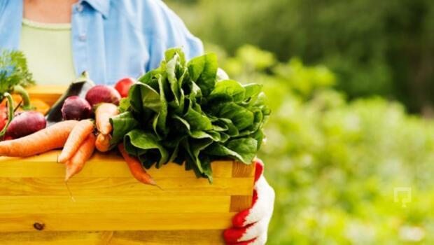 Adım adım organik tarım sektörünün e-ticaretteki yeri