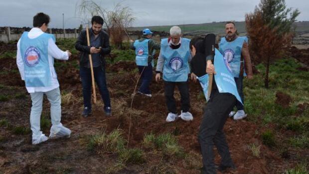 Sağlıkçılar hastane bahçesıni ağaçlandırdı