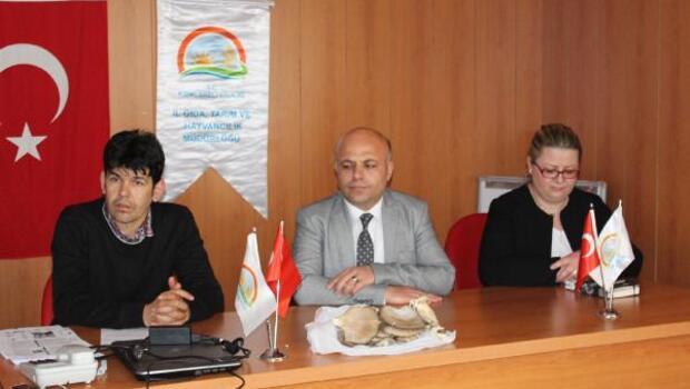 Kayın mantarı yetiştiriciliği eğitim konferansı