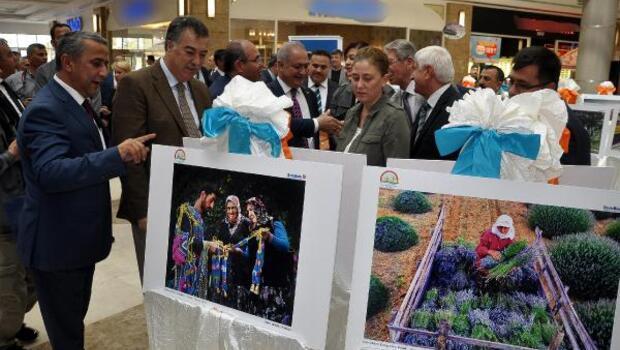 Tarım ve İnsan fotoğrafları Osmaniyede