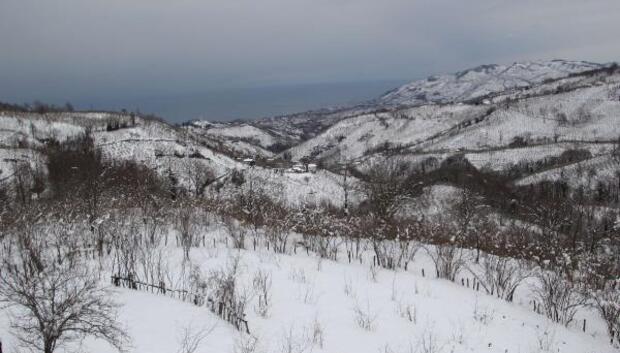 Ordu'da 313 mahalle yolu kardan ulaşıma kapandı