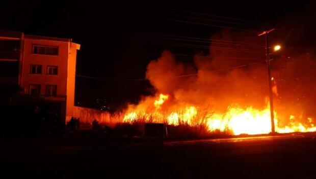 Sazlık yangınında 12 dönüm seralık alan zarar gördü