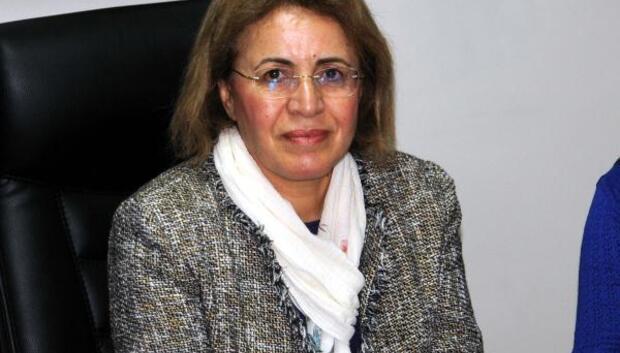 CHPli Köse: Seçilmiş bakana yapılan olay ülkeye hakarettir