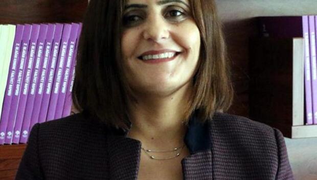 HDPli Taşdemir, Ağrıda gözaltına alındı