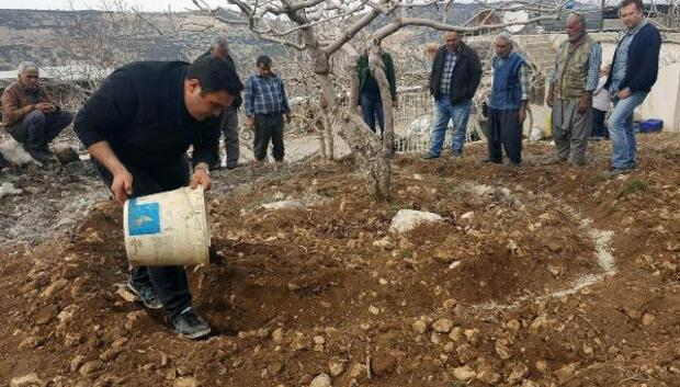 Çiftçiye Antep fıstığı eğitimi
