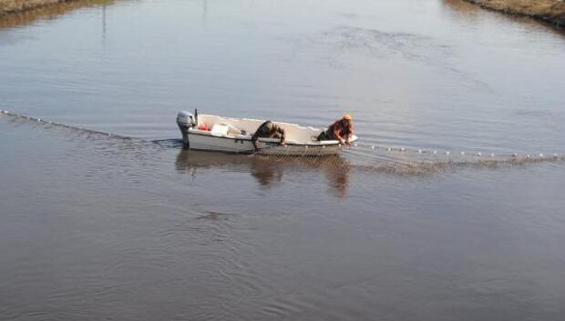 Ergene Nehrine atlayan liseli Özlem balık ağlarıyla aranıyor